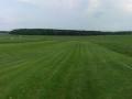 Start- und Landebahn mit weitläufigen Wiesen